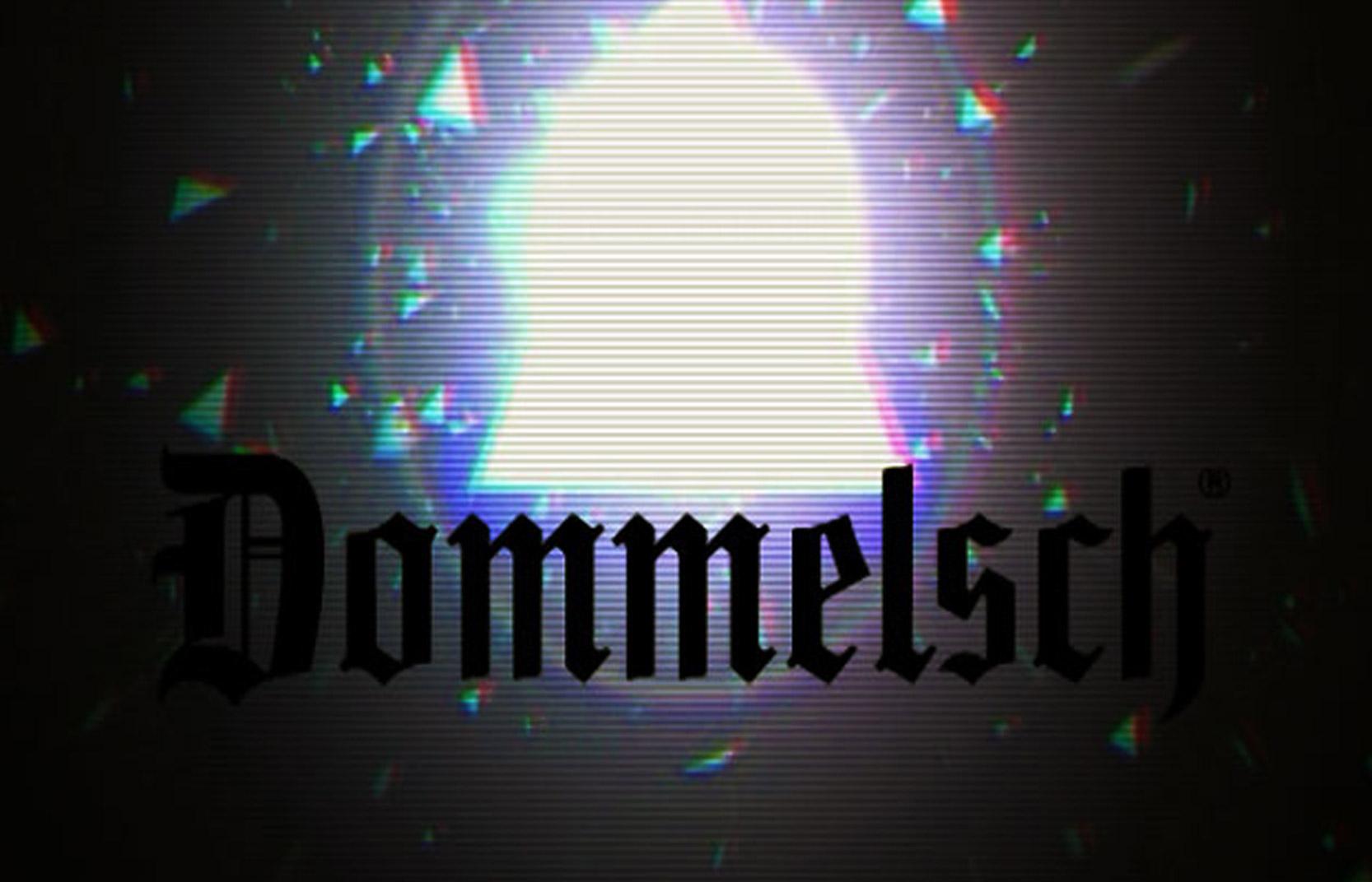 multi_dommelsch_video2